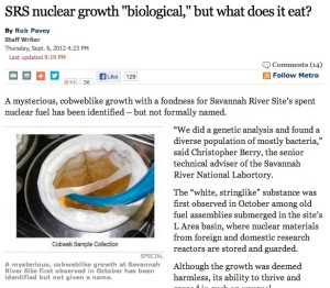 SRS nuclear growth _biological,_ but what does it eat?   The Augusta Chronicle